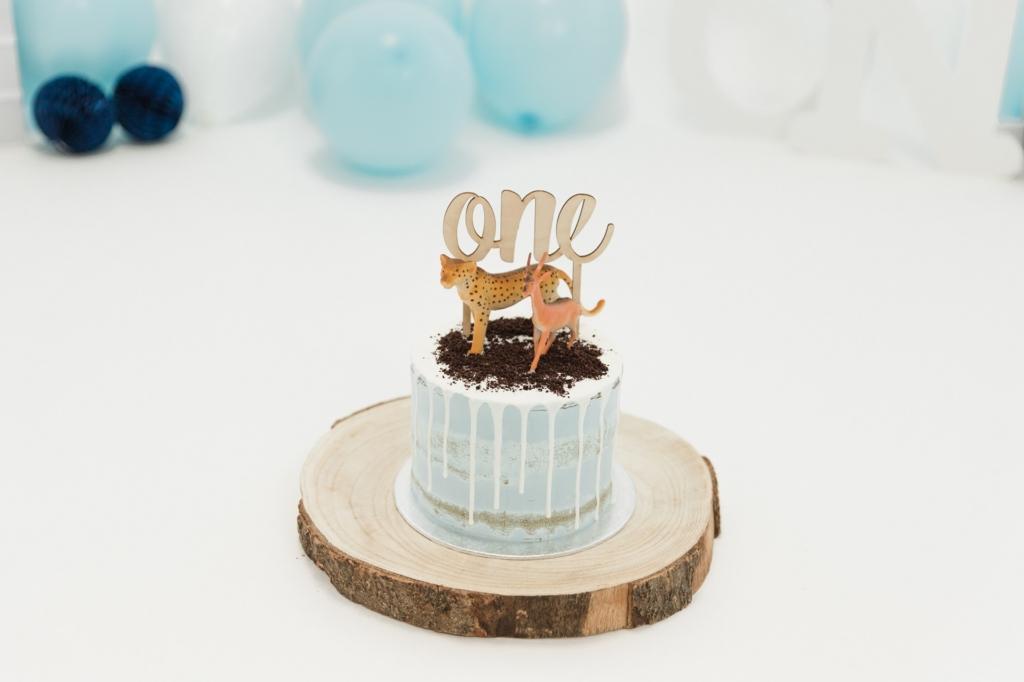 Fotografie Cake smash taart